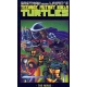 Teenage Mutant Ninja Turtles The Movie GN (1990) #1B