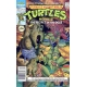 Teenage Mutant Ninja Turtles The Movie II (1991) #1A