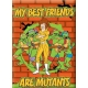 TMNT Best Friends Are Mutants magnēts