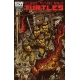 Teenage Mutant Ninja Turtles (2011 IDW) #8B