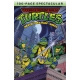 Teenage Mutant Ninja Turtles Archie 100 Page Spectacular