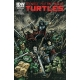 Teenage Mutant Ninja Turtles (2011 IDW) #12B