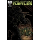 Teenage Mutant Ninja Turtles (2011 IDW) #15B