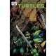 Teenage Mutant Ninja Turtles (2011 IDW) #21SUB