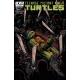 Teenage Mutant Ninja Turtles (2011 IDW) #23B