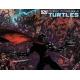 Teenage Mutant Ninja Turtles (2011 IDW) #28B