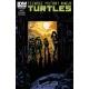 Teenage Mutant Ninja Turtles (2011 IDW) #29B