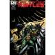 Teenage Mutant Ninja Turtles (2011 IDW) #31B