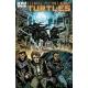 Teenage Mutant Ninja Turtles (2011 IDW) #33B