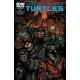 Teenage Mutant Ninja Turtles (2011 IDW) #39B